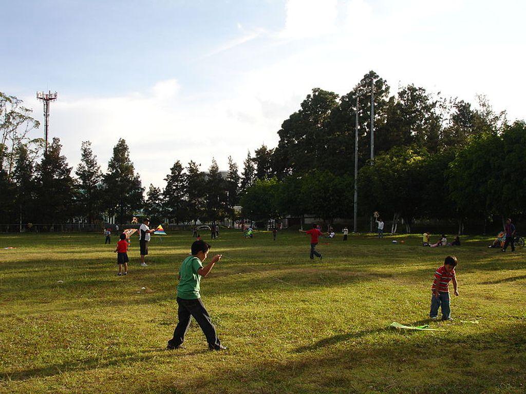 """Biblioteca """"Octavian Goga"""" Cluj îşi scoate colecţiile la lecturat gratuit în parc"""