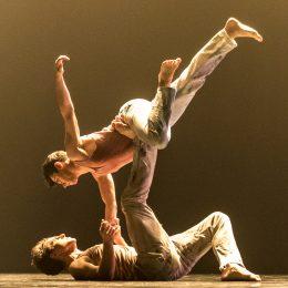 """Kamea Dance Company din Israel deschide Festivalul Internațional de Dans Contemporan """"STEPS"""""""
