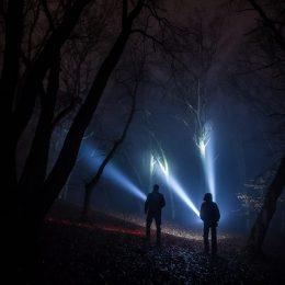 Se va lansa primul documentar turistic despre misterioasa pădure Hoia Baciu