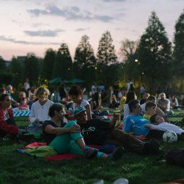 Caravana Filmelor NexT. 3 seri de picnic și cinema sub clar de lună în Parcul Iulius Mall