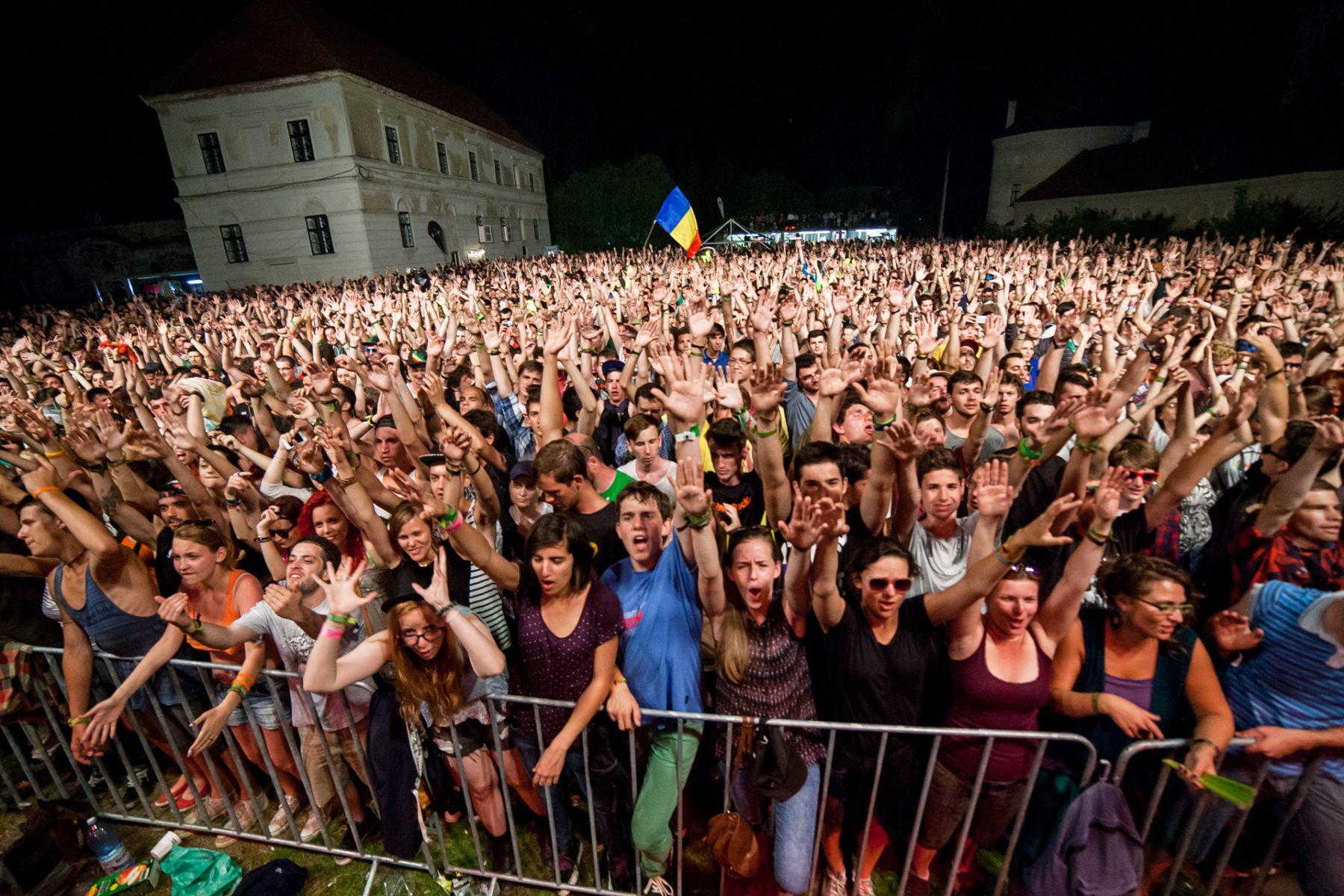 Festivalul Electric Castle (7)