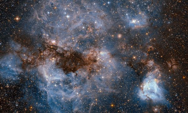 This shot from the NASA/ESA Hubble Space Telescope shows a maelstrom of glowing gas and dark dust within one of the Milky Way's satellite galaxies, the Large Magellanic Cloud (LMC). This stormy scene shows a stellar nursery known as N159, an HII region over 150 light-years across. N159 contains many hot young stars. These stars are emitting intense ultraviolet light, which causes nearby hydrogen gas to glow, and torrential stellar winds, which are carving out ridges, arcs, and filaments from the surrounding material. At the heart of this cosmic cloud lies the Papillon Nebula, a butterfly-shaped region of nebulosity. This small, dense object is classified as a High-Excitation Blob, and is thought to be tightly linked to the early stages of massive star formation. N159 is located over 160 000 light-years away. It resides just south of the Tarantula Nebula (heic1402), another massive star-forming complex within the LMC. It was previously imaged by Hubble's Wide Field Planetary Camera 2, which also resolved the Papillon Nebula for the first time.